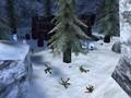Icefields Firefight